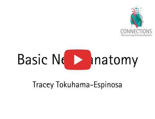 Basic Neuroanatomy for Teachers