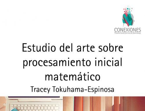 Estudio del arte sobre procesamiento inicial matemático