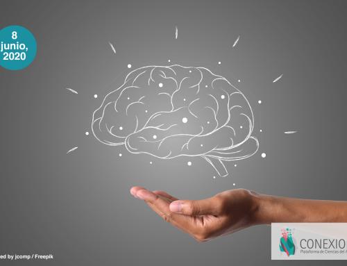 Fascinación con el cerebro y lo neuro